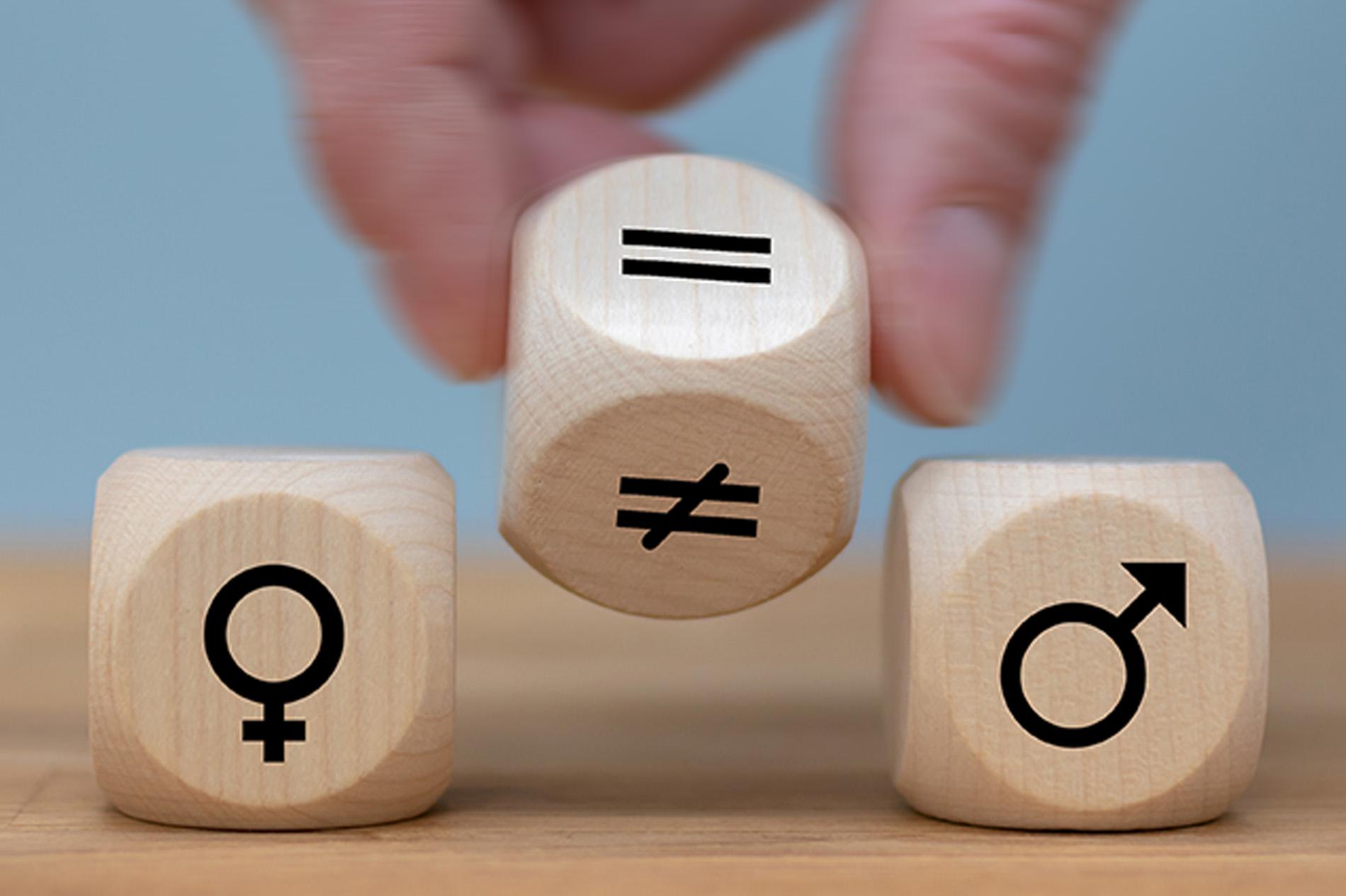 Desigualdades de género en el mundo del trabajo. Proyecto de investigación.